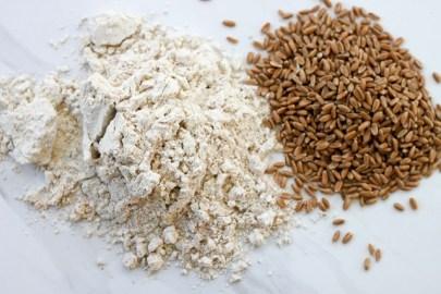 Spelt-Grain-and-Flour